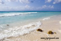 Caribbean dream -JCG © 2012